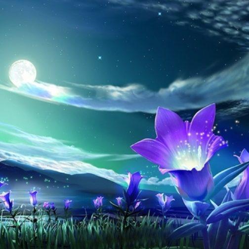 Лунный цветок, отдушка косметическая