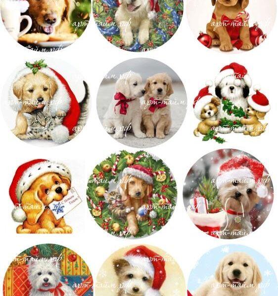 Новогодние  собачки под круг
