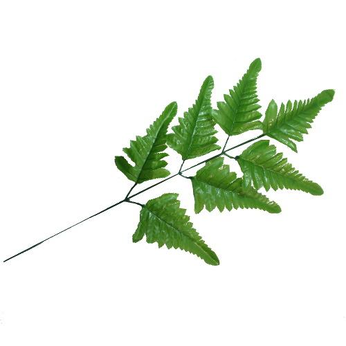 Ветка папоротника 7 листьев