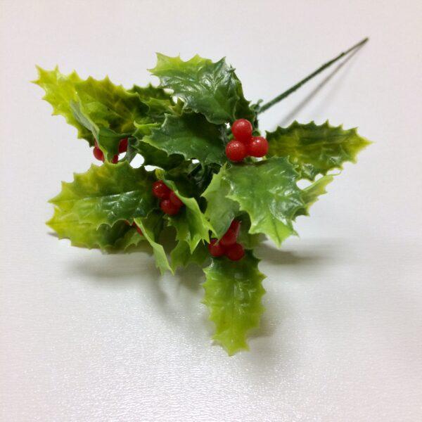 Ветка падуба зеленая