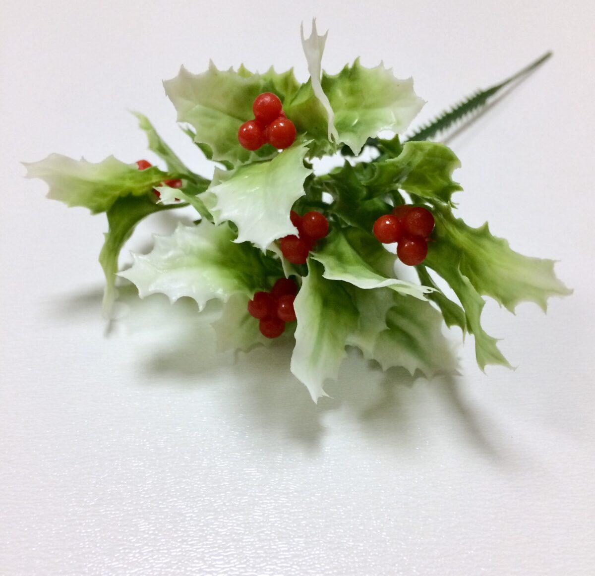 Ветка падуба бело-зеленая