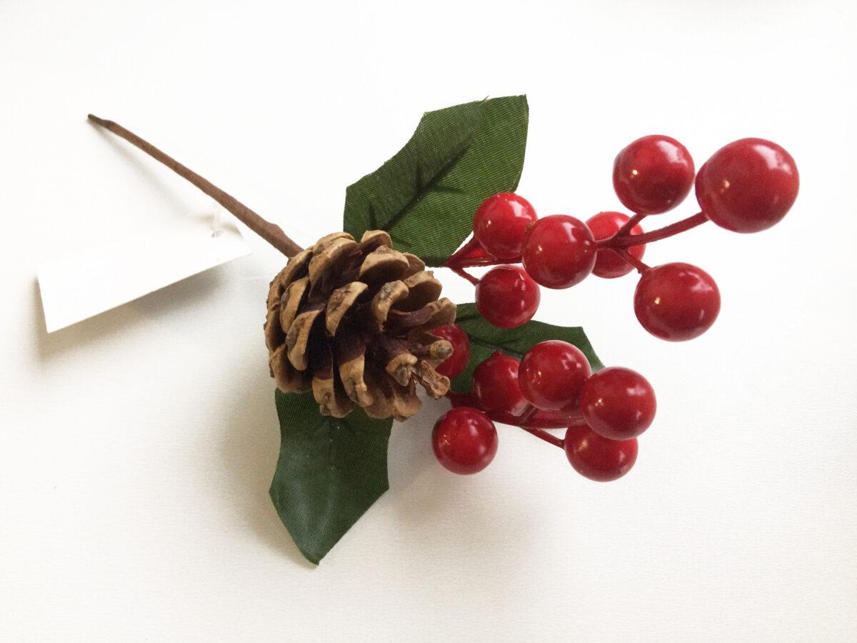 Веточка ягод с шишкой