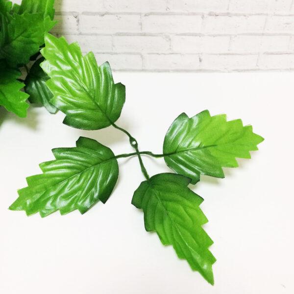 Листья хризантемы  4 листа