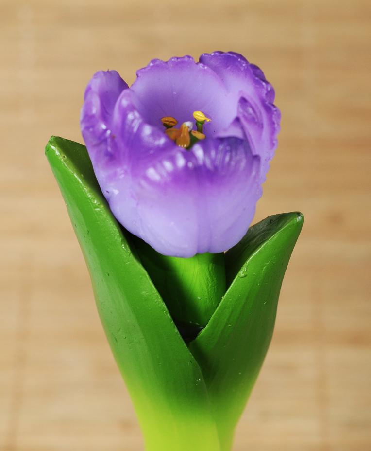 Тюльпан на стебле 3D