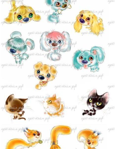 Животные №2